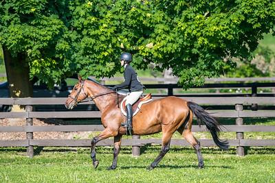 SPORTDAD_equestrian_116