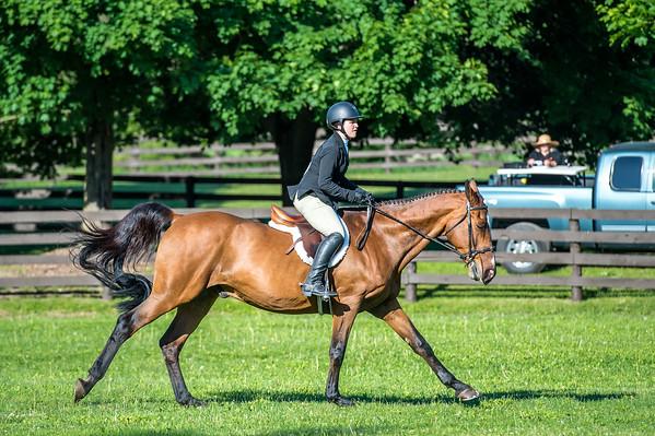 SPORTDAD_equestrian_060