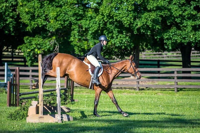 SPORTDAD_equestrian_7411