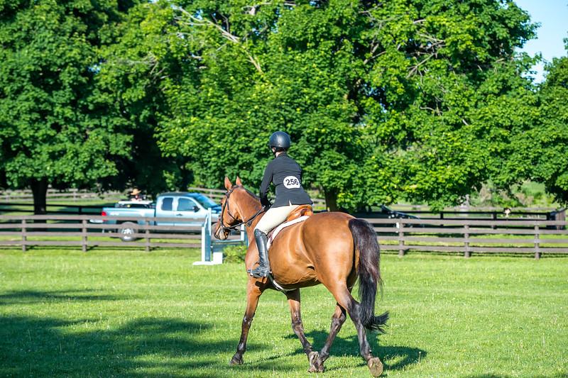 SPORTDAD_equestrian_7398