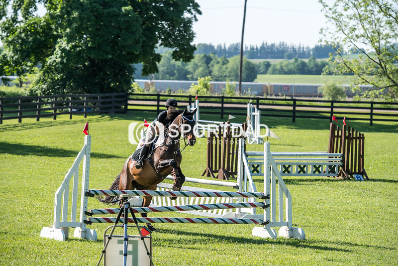SPORTDAD_equestrian_0372