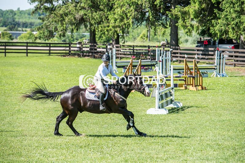 SPORTDAD_equestrian_0665