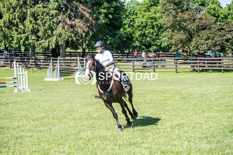 SPORTDAD_equestrian_0675