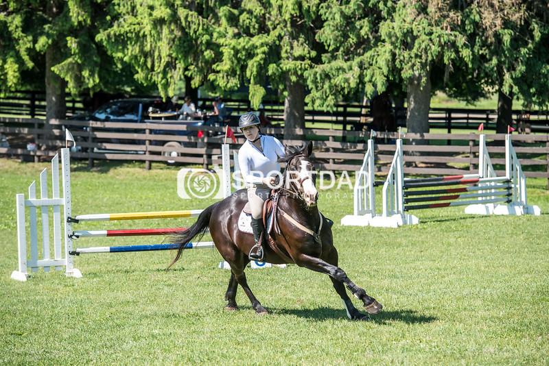 SPORTDAD_equestrian_0671