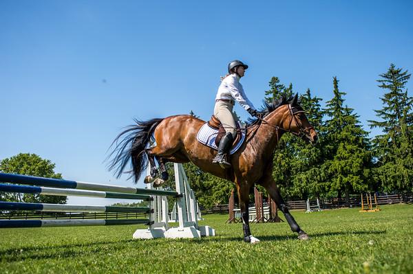 SPORTDAD_equestrian_7746