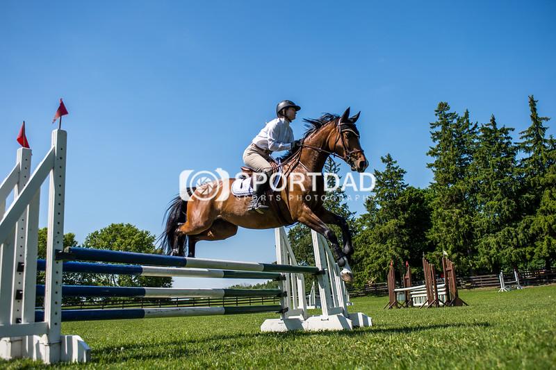 SPORTDAD_equestrian_7744