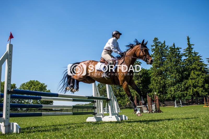 SPORTDAD_equestrian_7745