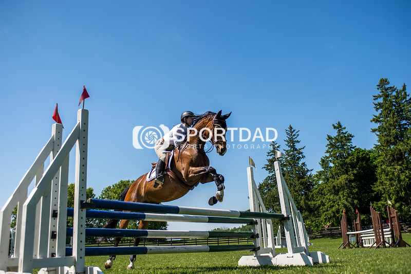 SPORTDAD_equestrian_7742