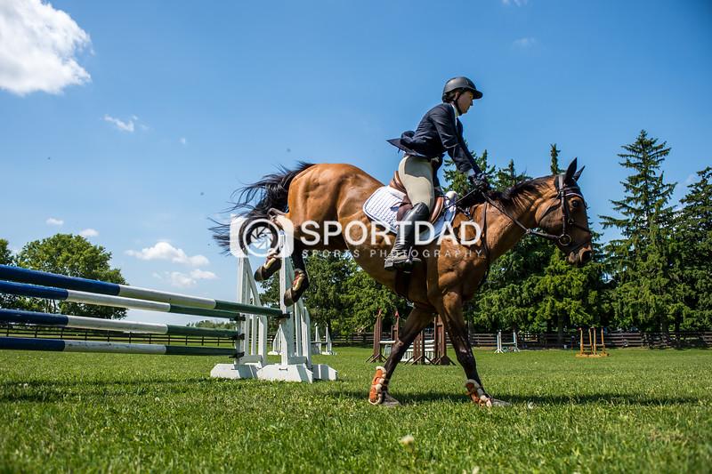 SPORTDAD_equestrian_7849