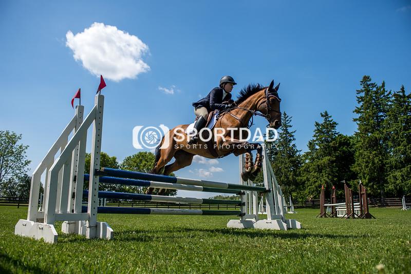 SPORTDAD_equestrian_7846