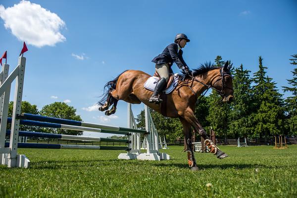 SPORTDAD_equestrian_7848