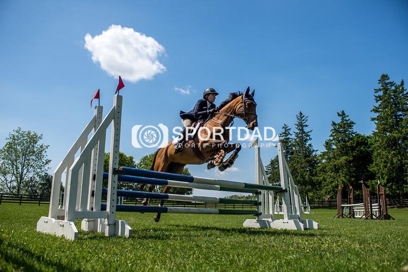 SPORTDAD_equestrian_7845
