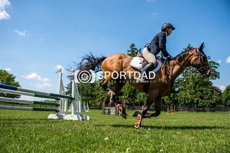 SPORTDAD_equestrian_7850