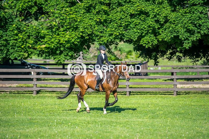 SPORTDAD_equestrian_7345
