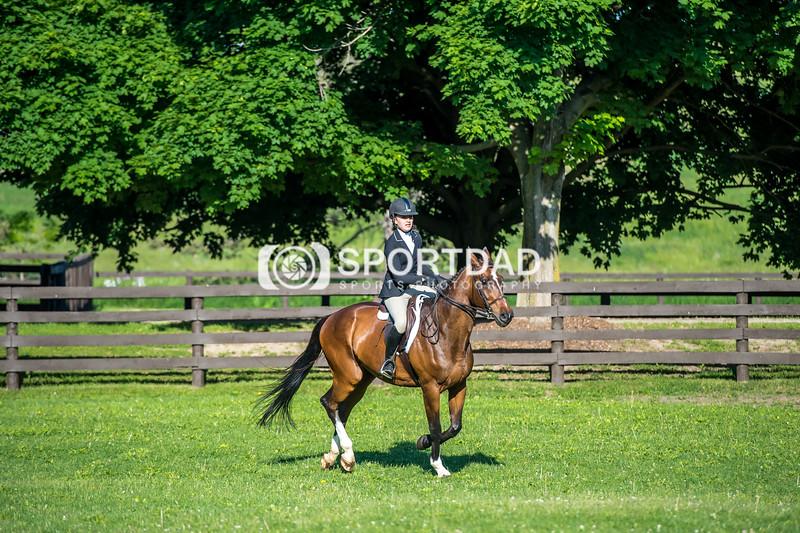 SPORTDAD_equestrian_7349