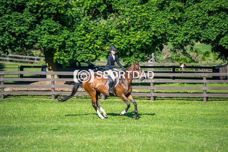 SPORTDAD_equestrian_7343