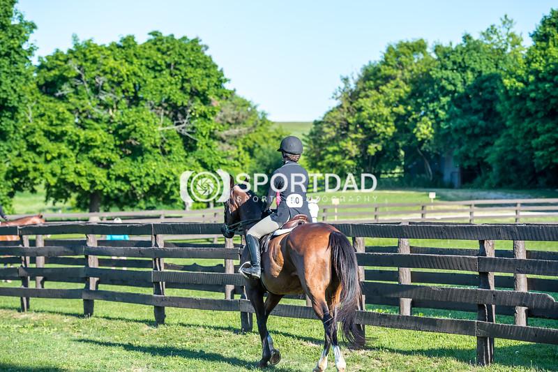 SPORTDAD_equestrian_7327