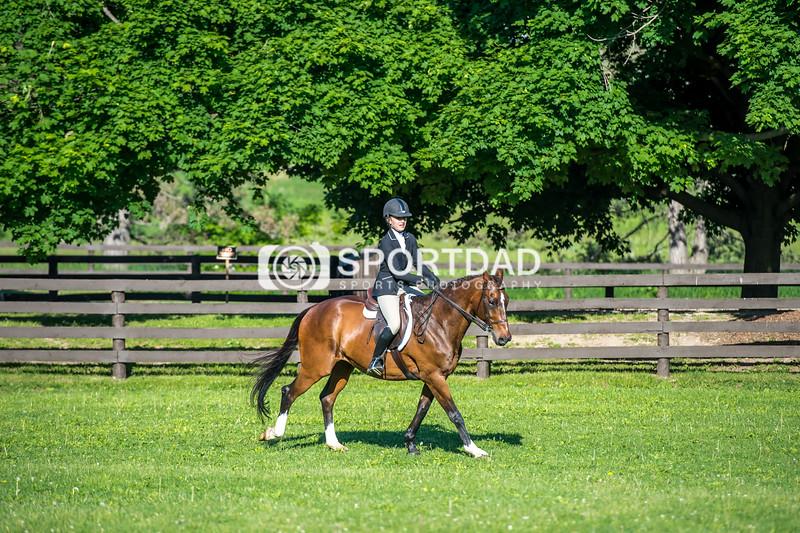 SPORTDAD_equestrian_7347