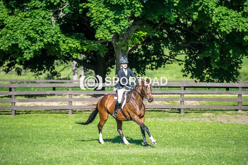SPORTDAD_equestrian_7350