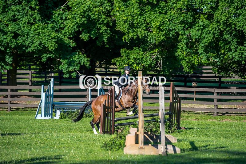 SPORTDAD_equestrian_7331