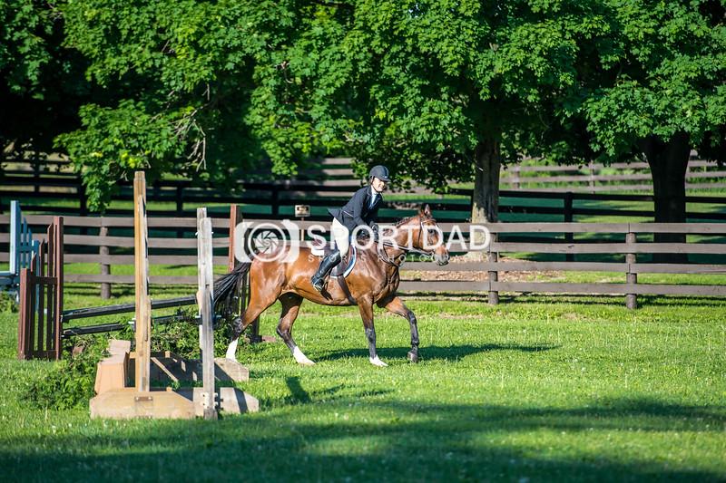 SPORTDAD_equestrian_7338