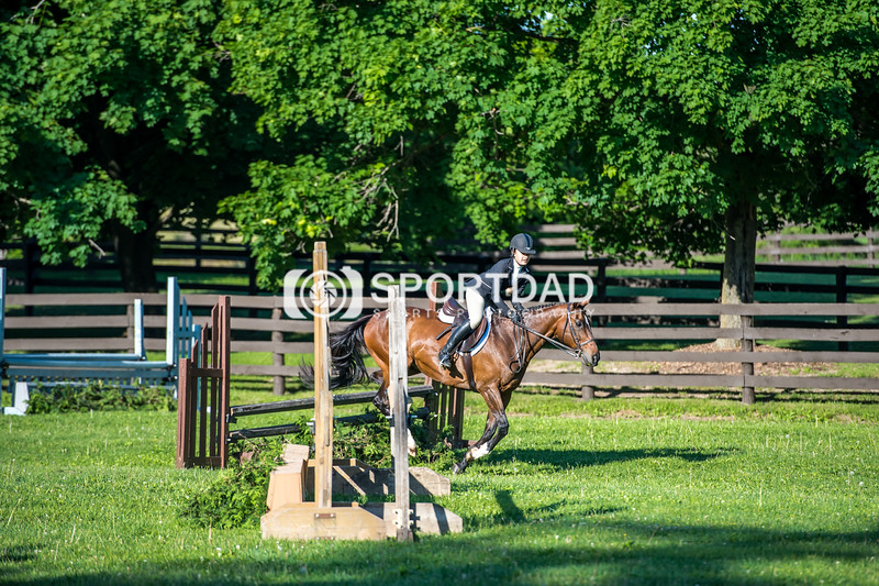 SPORTDAD_equestrian_7336