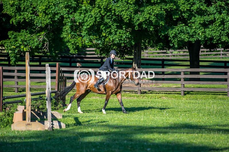 SPORTDAD_equestrian_7339