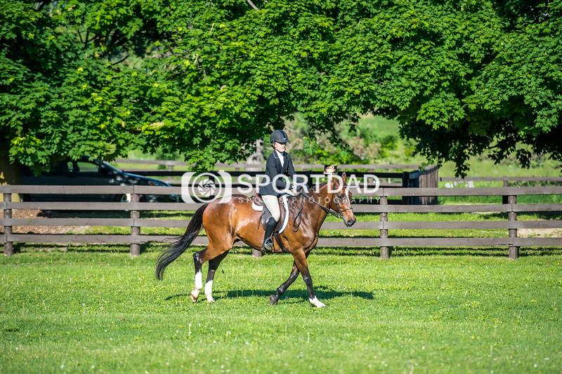 SPORTDAD_equestrian_7344