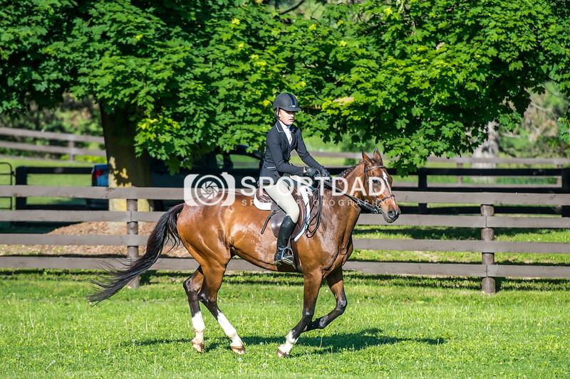 SPORTDAD_equestrian_7342