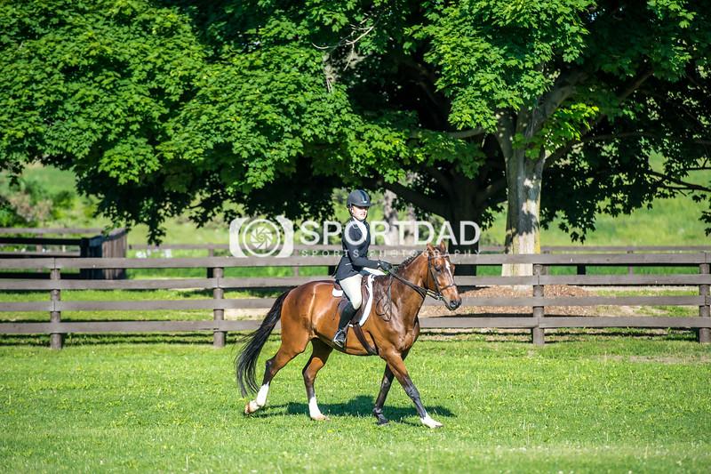 SPORTDAD_equestrian_7348