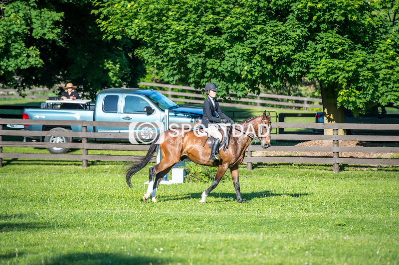 SPORTDAD_equestrian_7341