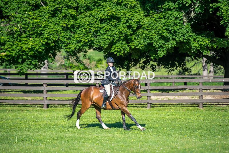 SPORTDAD_equestrian_7346