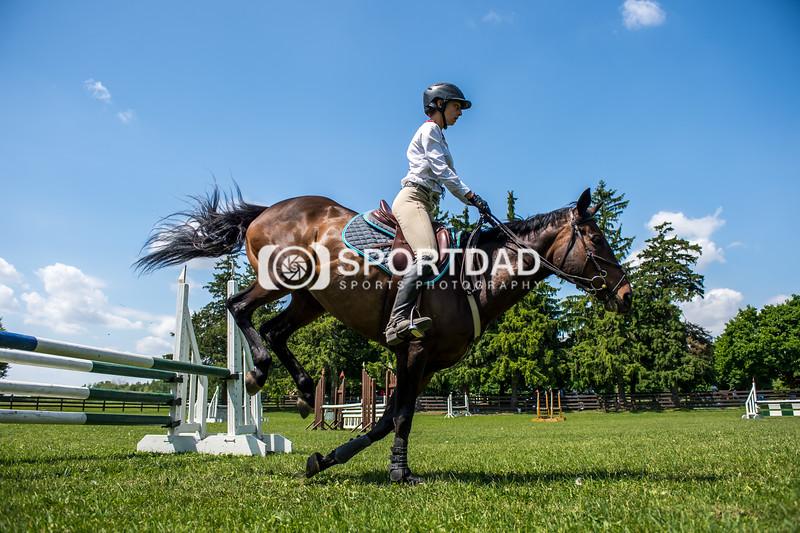 SPORTDAD_equestrian_7856