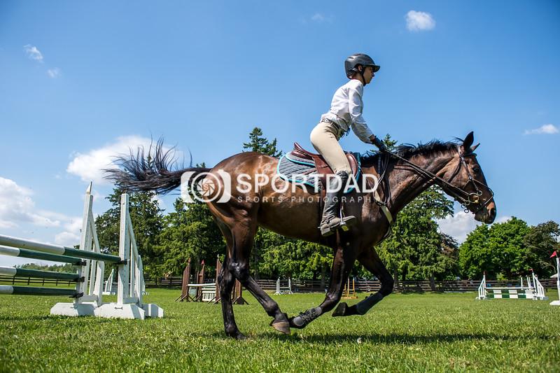 SPORTDAD_equestrian_7857