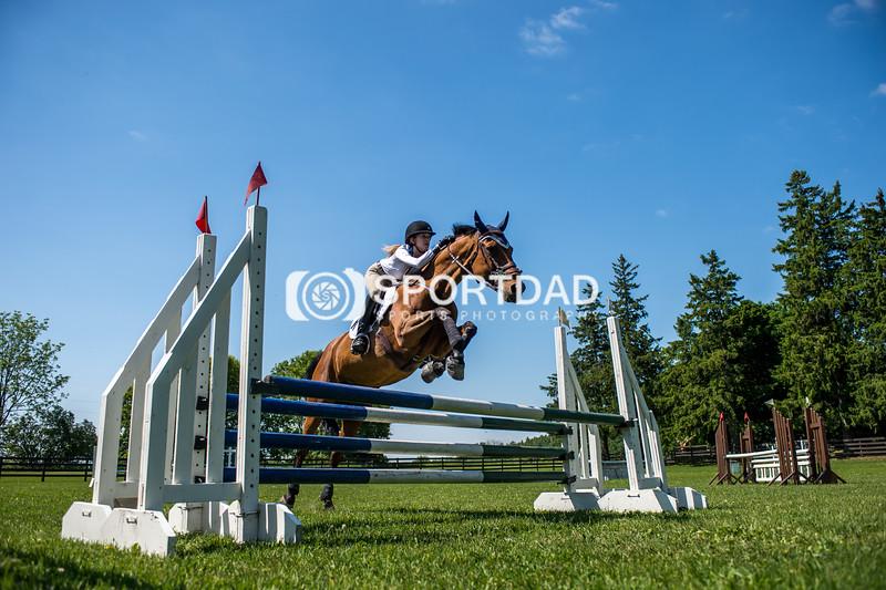 SPORTDAD_equestrian_7754