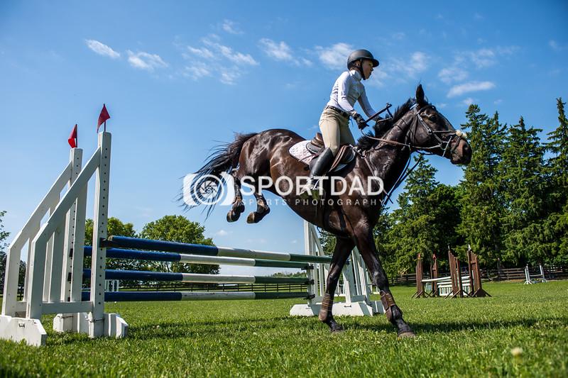 SPORTDAD_equestrian_7809