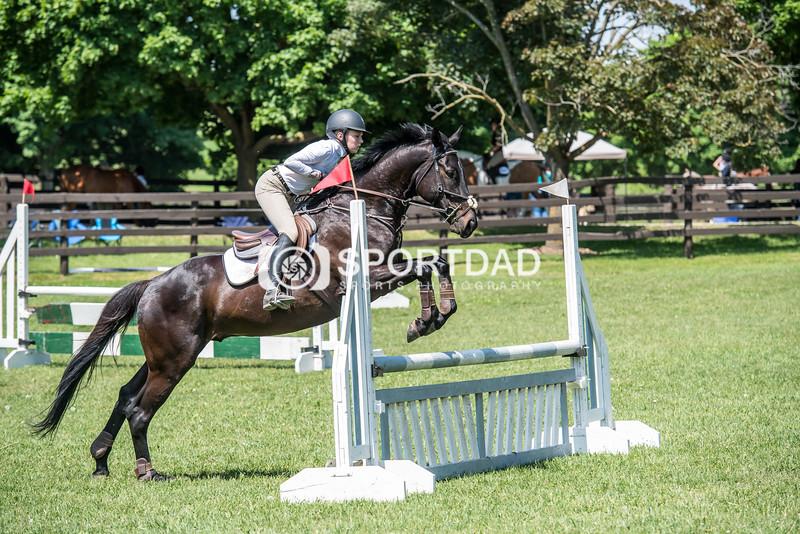 SPORTDAD_equestrian_1135