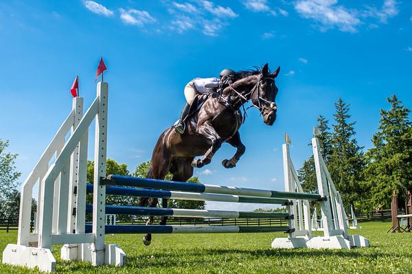 SPORTDAD_equestrian_7805