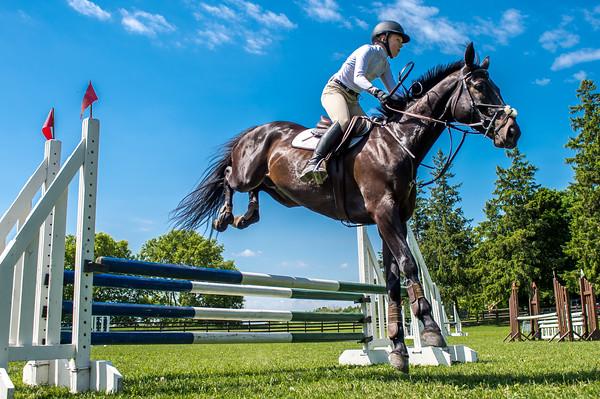 SPORTDAD_equestrian_7808