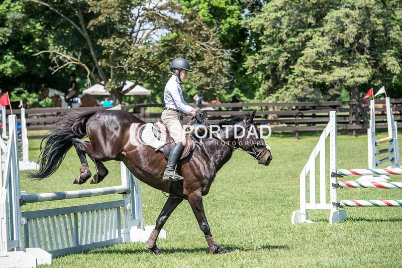 SPORTDAD_equestrian_1139