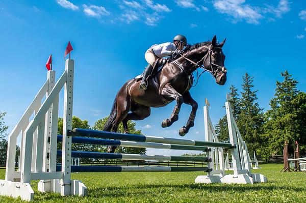 SPORTDAD_equestrian_7806