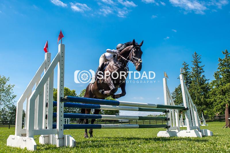 SPORTDAD_equestrian_7804