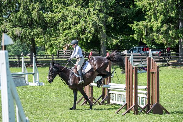 SPORTDAD_equestrian_1127