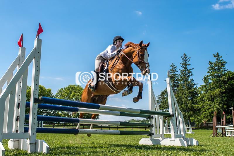 SPORTDAD_equestrian_7813