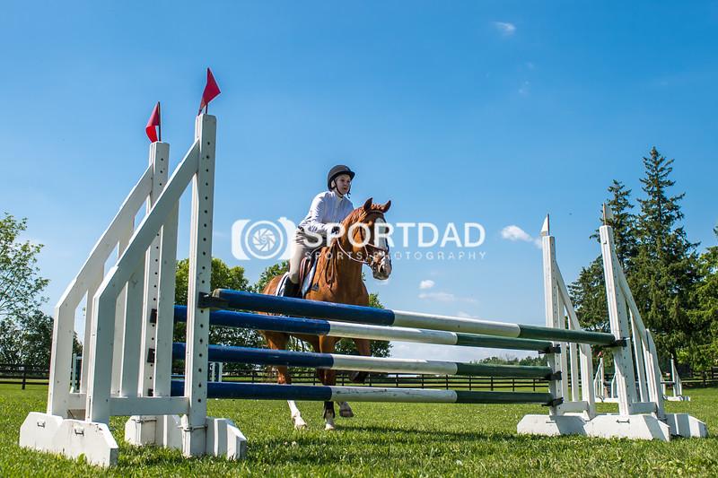 SPORTDAD_equestrian_7810