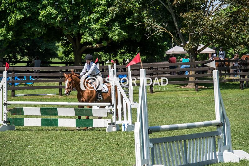 SPORTDAD_equestrian_1151