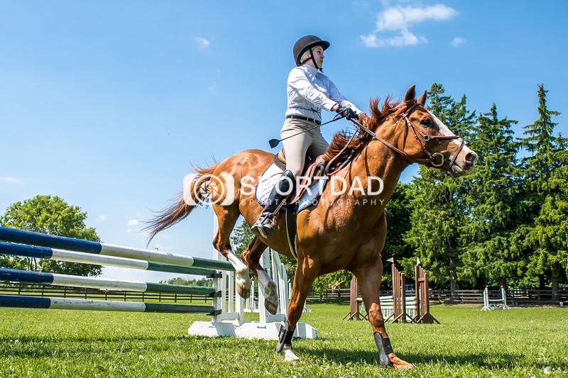 SPORTDAD_equestrian_7817