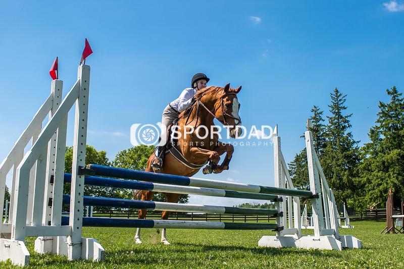 SPORTDAD_equestrian_7812