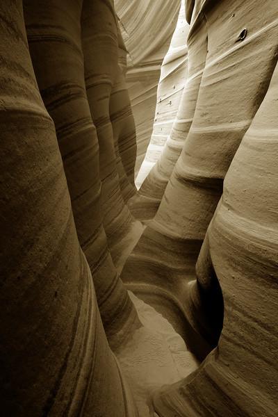 Pastel Sandstone