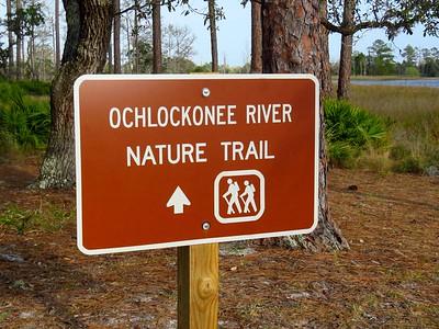 Ochlockonee River State Park (6)